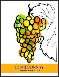 4355 Chardonnay